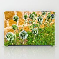 globe iPad Cases featuring Globe thistles by Pirmin Nohr