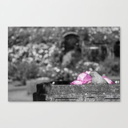 Stone Bird Canvas Print