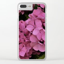 Pink hydrangea flowers Clear iPhone Case
