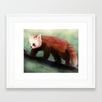 red panda Framed Art Prints featuring Red Panda by Ben Geiger