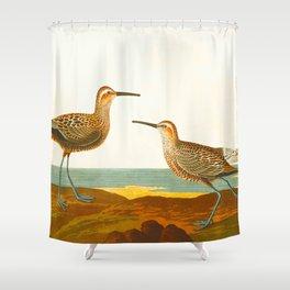 Long-legged Sandpiper Bird Shower Curtain