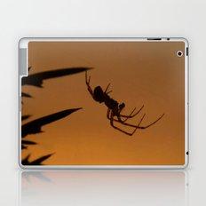 Sunset Spider Laptop & iPad Skin