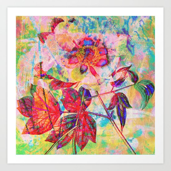 abstract anemone Art Print
