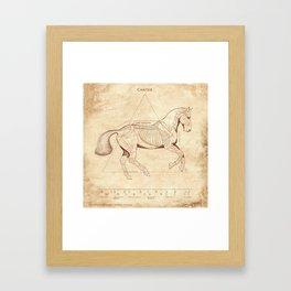 Da Vinci Horse: Canter Framed Art Print
