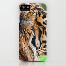 Awesome Impressive Grown Wet Jungle Tiger Head Profile Close Up Ultra HD iPhone Case