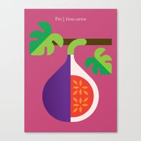 fig Canvas Prints featuring Fruit: Fig by Christopher Dina