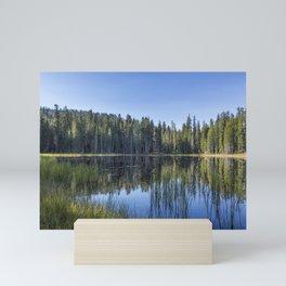 Siesta Lake Mini Art Print