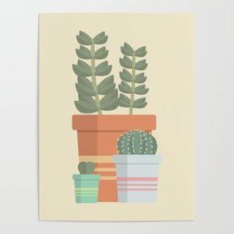 A collection of succulents Poster
