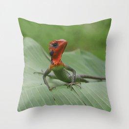Gecko iguana Red Head Throw Pillow