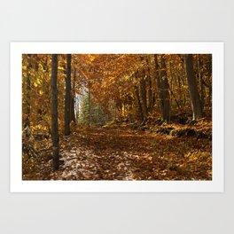 Fall Canada Art Print