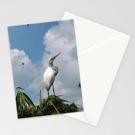Dino Bird Stationery Cards