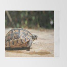 Sideview of A Walking Turkish Tortoise Throw Blanket