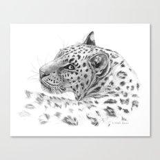 Leopard - Glance back Canvas Print