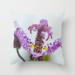 Toad Lily Side Perspective Throw Pillow