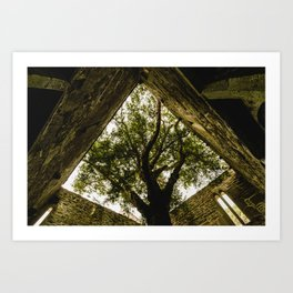 Under the Yew Art Print