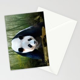 The Giant Panda Stationery Cards