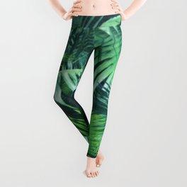 Tropical Botanic Jungle Garden Palm Leaf Green Leggings