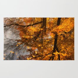 Fall Reflection Rug