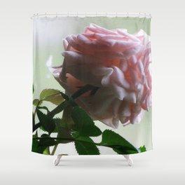 Kemet Design 69 Shower Curtain