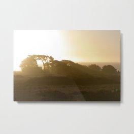 Point Cabrillo Headlands - Northern California Coast Metal Print