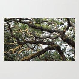 Live Oak Tree Rug