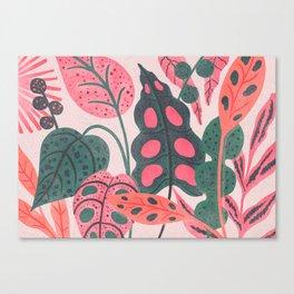 PLANTS Canvas Print
