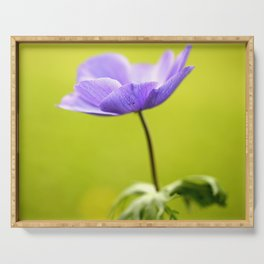 Purple Anemone Natural Green Background Serving Tray