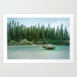 Nature corner at the secluded Natural Pool on Isle of Pines in New Caledonia. Art Print