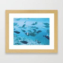 Green Island Framed Art Print