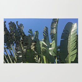 Dominican Palms Rug