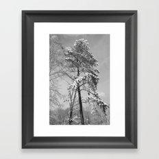 A Snowy Day Framed Art Print