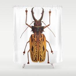 Macrodontia Cervicornis Sabertooth Beetle Shower Curtain