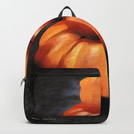 Nice Set Of Gourds 4 Backpack