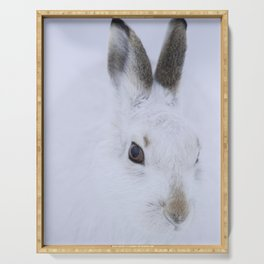 White bunny, white snow Serving Tray