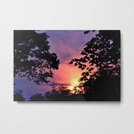 NY Sunset Trees Metal Print