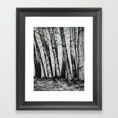 The Row  Framed Art Print