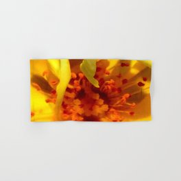 Pollen Macro Photography By Saribelle Rodriguez Hand & Bath Towel