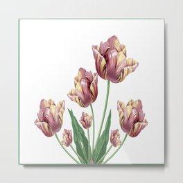 Pinwheel Tulip Metal Print