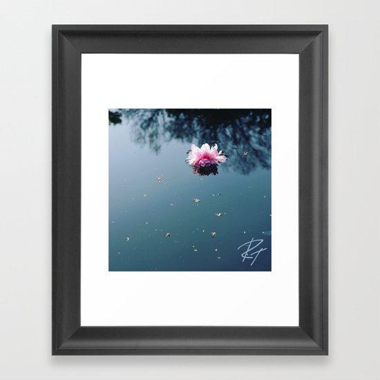 Lone Blossom Framed Art Print