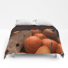 Pumpkins In a Box! Comforters
