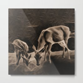 Doe And Fawn At Night Metal Print