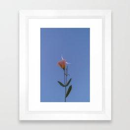to make life important. Framed Art Print