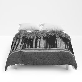 Black & White Date Palms Yuma Pencil Drawing Photo Comforters