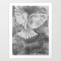 Storm Dove Art Print