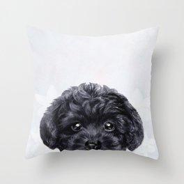Toy poodle Black Throw Pillow