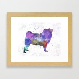 Pug 02 in watercolor Framed Art Print