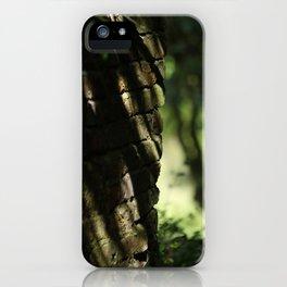Marquise iPhone Case