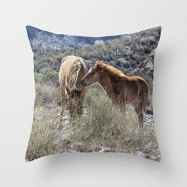 Salt River Mare and Her Colt, No. 1 Throw Pillow