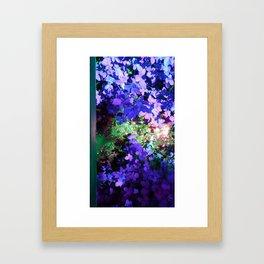 Iris Julep Framed Art Print