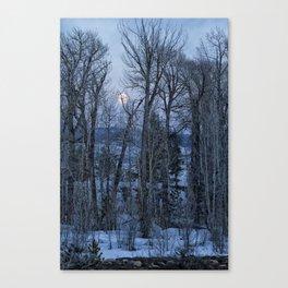 Full Moon Through Trees At Dusk Canvas Print